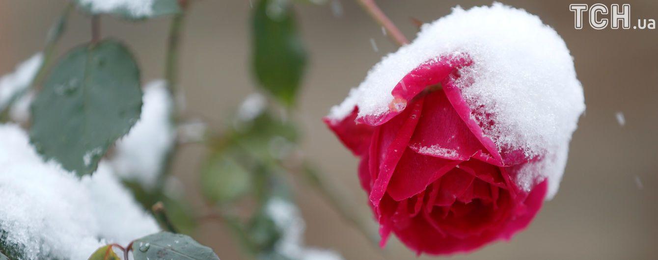 Сніг перейде в дощ і буде ожеледиця. Прогноз погоди на 7 грудня