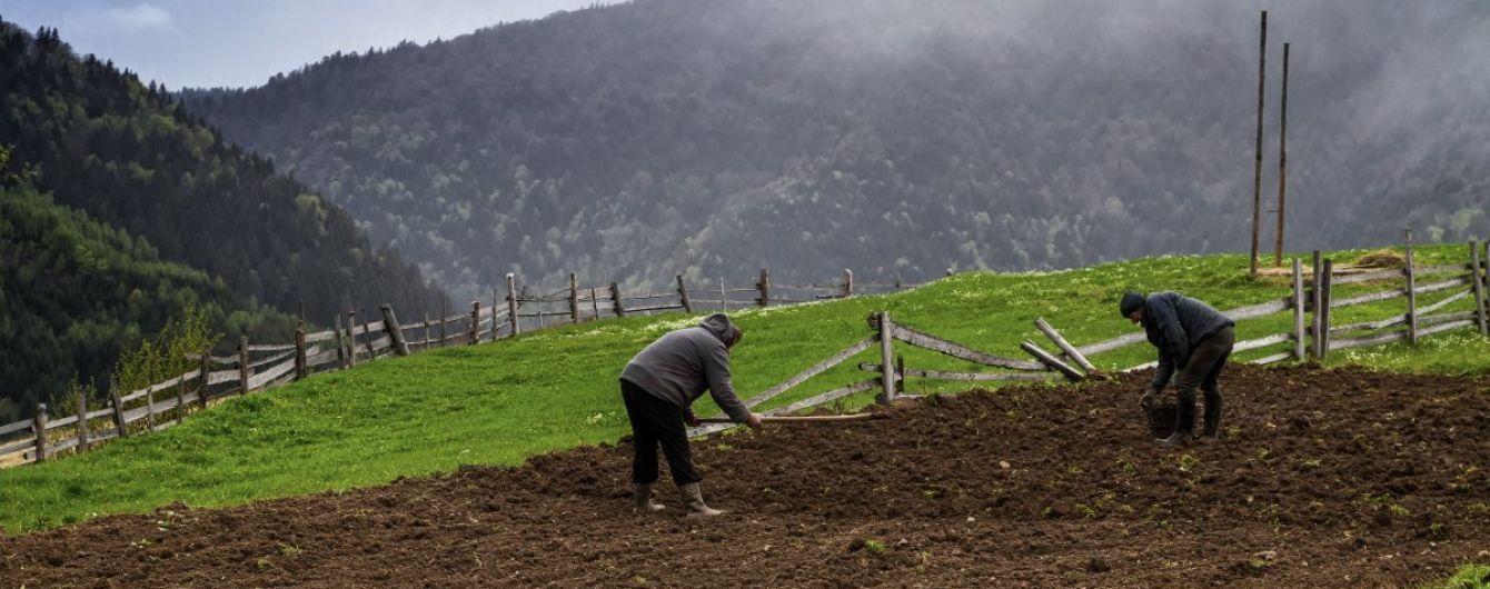 Парубий пообещал, что Рада примет мораторий на продажу земли