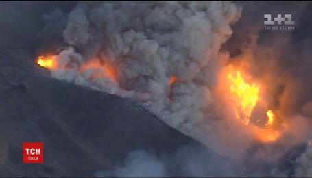 Калифорния страдает от масштабных лесных пожаров