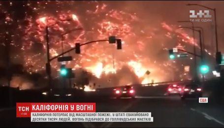 Каліфорнія у вогні: полум'я вже наблизилося до елітних передмість Лос-Анджелеса