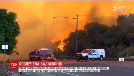 В Калифорнии мощный пожар уничтожает дома и особняки миллионеров