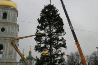 """""""Лысое бревно"""": пользователи соцсетей поглумились над главной елкой страны"""