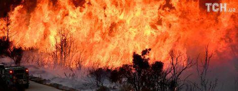 В калифорнийских пожарах могут сгореть имения Джорджа Лукаса и Милы Кунис