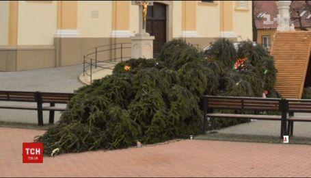 В Словакии от сильного ветра упала главная елка