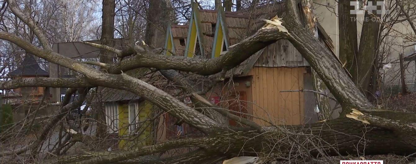 Раптовий буревій наробив лиха в українських Карпатах