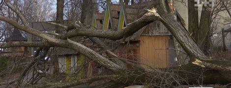 Внезапный ураган наделал бед в украинских Карпатах