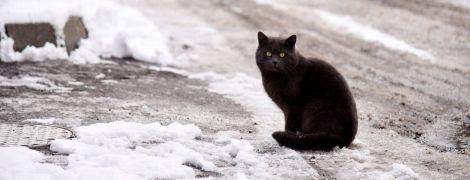 До України насувається негода. Прогноз погоди на 13 грудня