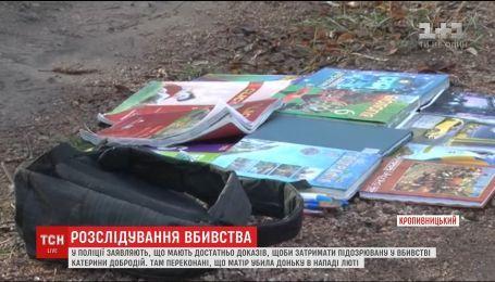 Моторошна трагедія: що відомо про вбивство дівчинки у Кропивницькому