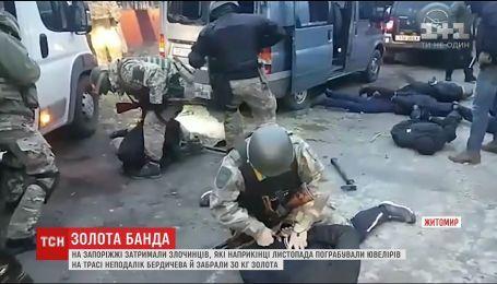 У задержанной на Запорожье банде, которая украла 30 килограмм золота, нашли оружие и боеприпасы