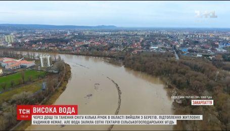 В Сети появилось видео масштабного наводнения в Закарпатье