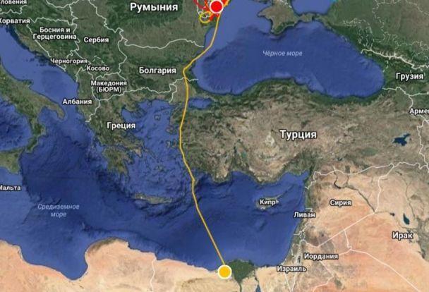 На Одесчине браконьеры убили краснокнижного сокола, за путешествиями которого наблюдали в Украине