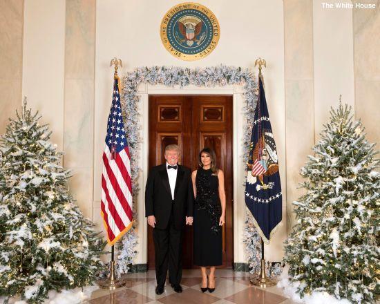 Білий дім оприлюднив офіційне різдвяне фото Трампів біля дверей між ялинками