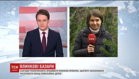 В Україні відкрились перші ялинкові ярмарки