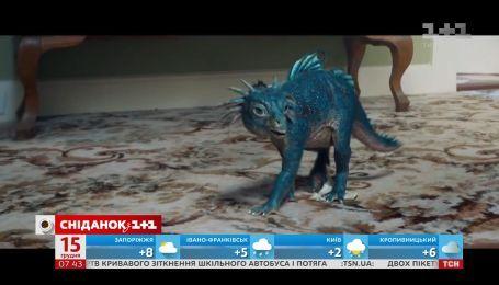 """""""Звездные войны: последние джедаи"""", """"По ту сторону надежды"""", """"Мой любимый динозавр"""" - Киносніданок"""