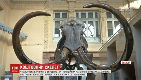 Во Франции за рекордно высокую цену продали скелет мамонта