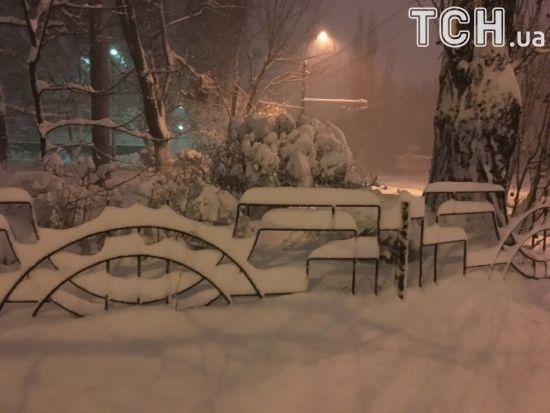 Кличку не спиться через снігопад разом із комунальниками