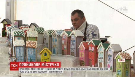 Сладкий рекорд: в Одессе построили сказочный пряничный городок