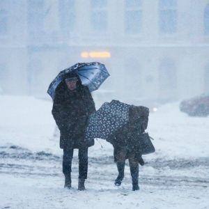 Синоптики обіцяють три дні погодного армагедону зі снігопадами, хуртовинами та морозами