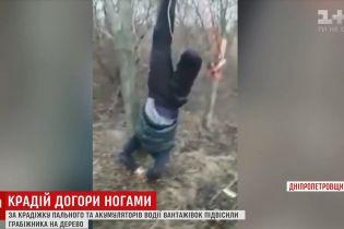 Дальнобойщики подвесили на дереве вверх ногами вора горючего на Днепропетровщине