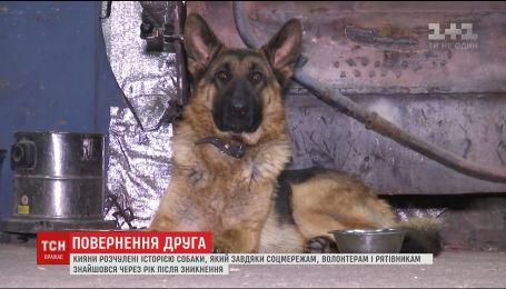 Киевлянин нашел собаку, которую потерял почти год назад