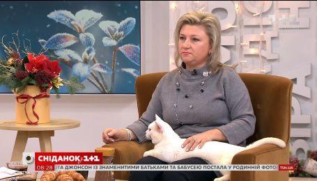 """В гостях  """"Сніданок з 1+1"""" - владелица манчкинов и ее любимцы"""