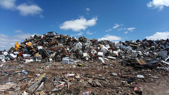 В Одеській області на сміттєзвалищі виявлено рештки дитини