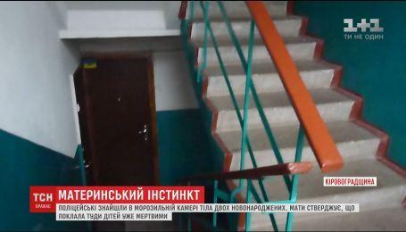 На Кіровоградщині поліція знайшла у морозилці породіллі тіла новонароджених