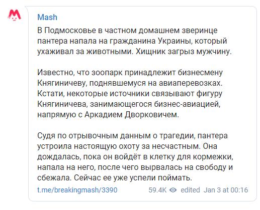 пантера загризла українця