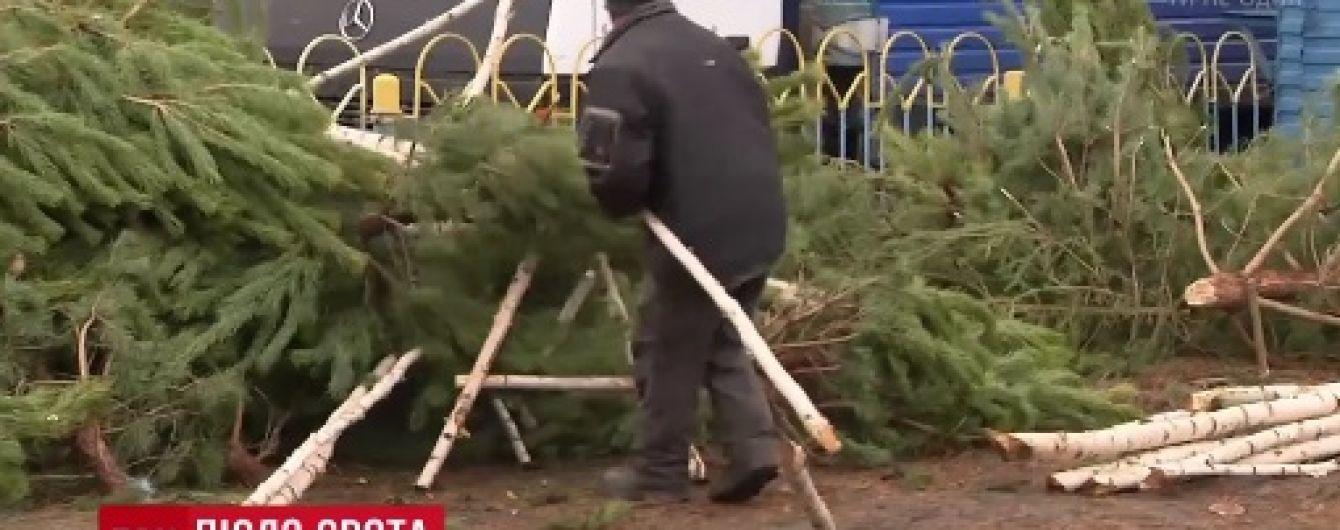 """Киевляне объединяются, чтобы самостоятельно убрать многочисленные """"елочные кладбища"""""""