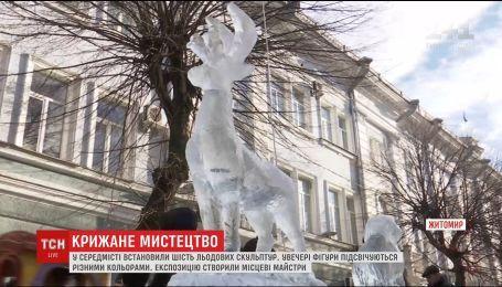 В центре Житомира установили произведения ледяного искусства