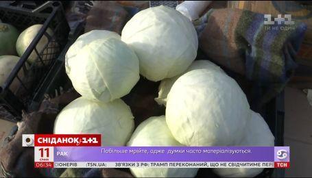 Капуста стала чуть ли не самым дорогим овощем для украинцев
