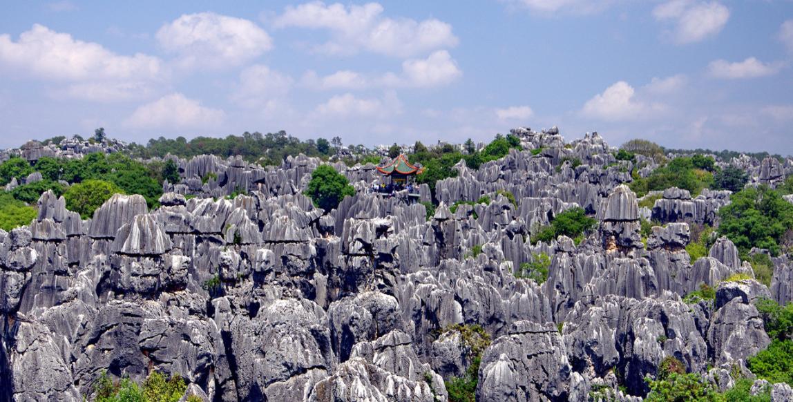 Кам'яний ліс, Юньнань, Китай