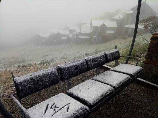 В Австралії серед літа випав сніг