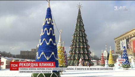 Харьковская елка попала в книгу рекордов Украины