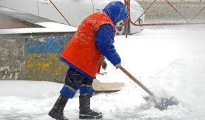 Як прибирають сніг біля будинків чиновників: рейд журналістів елітними подвір'ями Києва