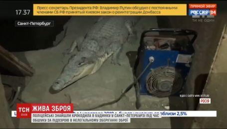 В Санкт-Петербурге полицейские случайно наткнулись на крокодила, когда искали оружие в доме