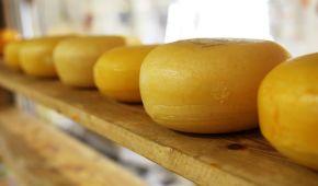 Гастротур Вінниччиною: в селі Мухівці виготовляють сир та йогурти за ізраїльськими стандартами