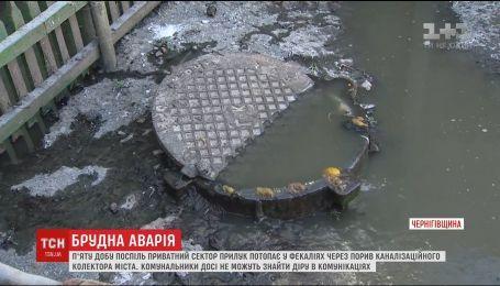 П'яту добу у нечистотах потопає приватний сектор Прилук