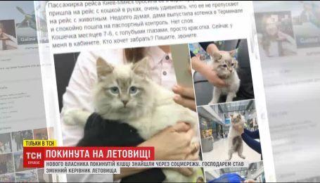 Хозяином заброшенной в аэропорту кошки стал сменный руководитель аэропорта