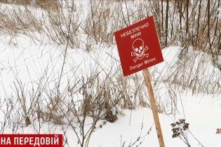 Бойовики біля Донецька вирішили використовувати котів у протистоянні з українською армією