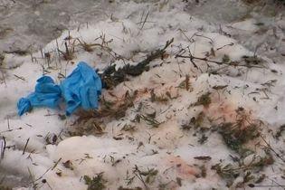 На месте падения вертолета в Кременчуге нашли голову одного из членов экипажа