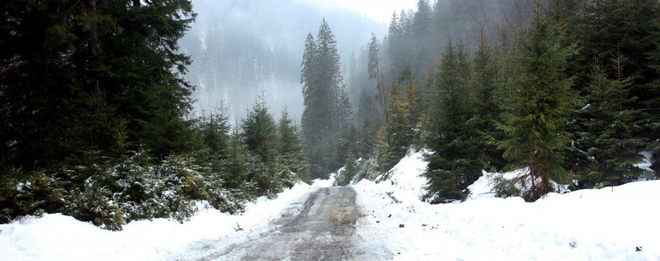 В Украину пришла оттепель. Прогноз погоды на 6 марта