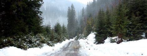 Воскресенье будет со снегом и туманами. Прогноз погоды на 18 февраля