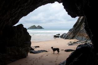 Романтичний пляж у Великій Британії приховує таємницю, що крає серце