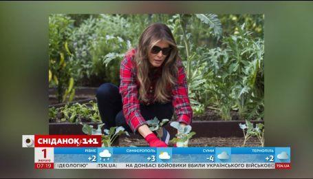 С киноплощадки на грядку: голливудские звезды массово увлеклись садоводством