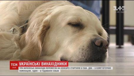 """Собача няня: український стартап здобув першість в номінації """"найдивніший продукт року"""""""