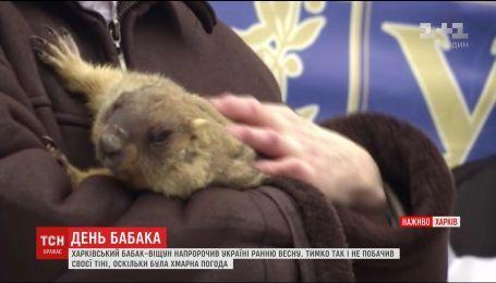 Харьковский сурок-предсказатель напророчил Украине раннюю весну