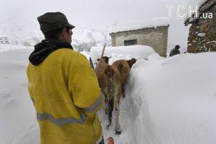 В Европе бушует непогода: в Испании насыпало снега по пояс