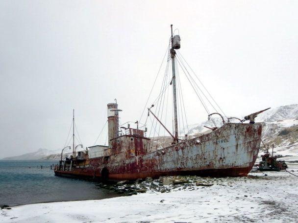 Станция Дьявола: на кровавой китобойне, что стала музеем, разобрали 175 тысяч туш