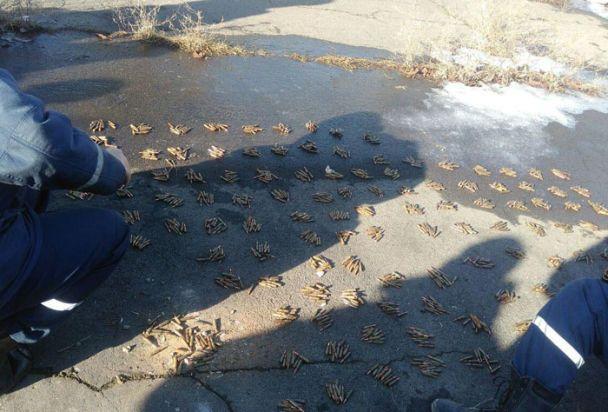 На Донетчине возле футбольного поля, где играют дети, обнаружили немалый арсенал боеприпасов